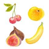 Cerezas, albaricoque, higos y plátano Fotos de archivo libres de regalías