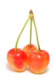 Cerezas anaranjadas Fotografía de archivo libre de regalías