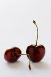 Cerezas de Bing fotografía de archivo libre de regalías