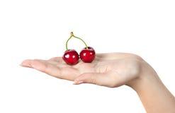 Cerezas de las bayas en la palma de la mujer Bayas rojas a mano Fotografía de archivo