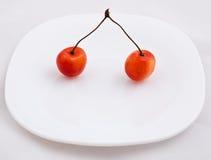 Cerezas dulces Imagen de archivo libre de regalías