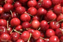 Cerezas dulces Foto de archivo