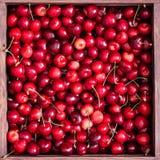 Cerezas dulces en la caja de madera foto de archivo