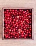 Cerezas dulces en la caja de madera fotos de archivo