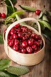Cerezas dulces en una cesta de madera fotografía de archivo libre de regalías