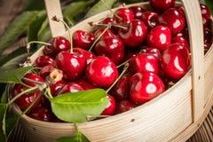 Cerezas dulces en una cesta de madera fotos de archivo