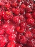 Cerezas en azúcar Fotografía de archivo libre de regalías
