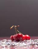 Cerezas en el hielo Foto de archivo libre de regalías