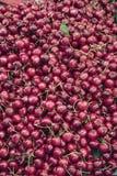 Cerezas en el mercado del granjero Fotos de archivo libres de regalías
