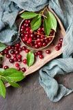Cerezas en el vector de madera Fondo de la fruta Imagen de archivo libre de regalías