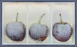 3 cerezas en hielo Foto de archivo