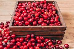 Cerezas en la caja de madera foto de archivo libre de regalías