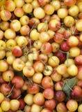 Cerezas en un mercado de los farmer's imagen de archivo libre de regalías