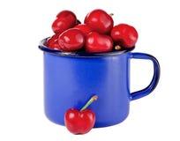 Cerezas en una taza azul Foto de archivo libre de regalías