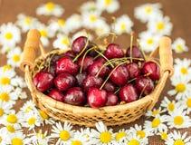 Cerezas frescas Foto de archivo