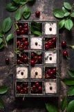 Cerezas frescas en caja de madera imágenes de archivo libres de regalías