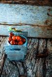 Cerezas frescas en la madera Imágenes de archivo libres de regalías