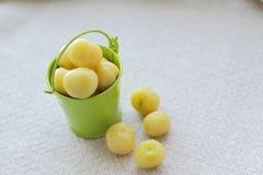 cerezas frescas en poco cubo verde, lugar para el texto Fotos de archivo libres de regalías