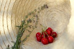 Cerezas frescas en un sombrero del sol Fotografía de archivo libre de regalías