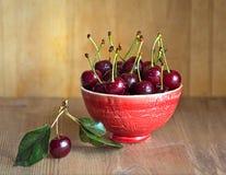 Cerezas frescas y maduras del jardín Bayas de la estación, comida del verano Foto de archivo