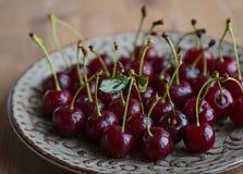 Cerezas frescas y maduras del jardín Bayas de la estación, comida del verano Fotografía de archivo libre de regalías