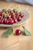 Cerezas frescas y maduras del jardín Bayas de la estación, comida del verano Fotografía de archivo