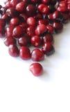 Cerezas maduras frescas fotografía de archivo libre de regalías
