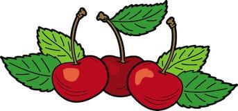 Cerezas rojas con las hojas Fotos de archivo libres de regalías