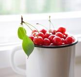 Cerezas rojas en la taza blanca Foto de archivo