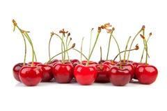 Cerezas rojas frescas Imagen de archivo libre de regalías