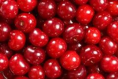 Cerezas rojas maduras Fotografía de archivo