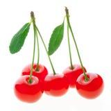Cerezas rojas maduras aisladas en el fondo blanco Fotos de archivo