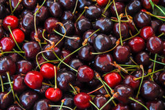 Cerezas rojo oscuro Fotografía de archivo libre de regalías