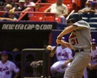 Cerf de la BO, St Louis Cardinals Images libres de droits