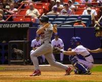 Cerf de la BO, St Louis Cardinals Images stock
