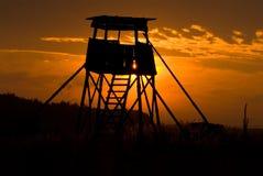 Cerf-restez Photo libre de droits