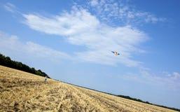 Cerf-volant au-dessus du champ Photos stock