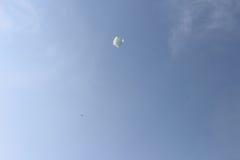 Cerf-volant blanc images libres de droits