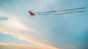 Cerf-volant coloré de papillon Images libres de droits