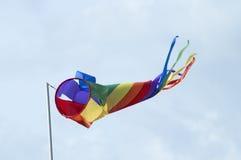 Cerf-volant coloré le jour venteux de pôle Photographie stock libre de droits
