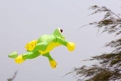 Cerf-volant coloré dans le ciel bleu Images stock