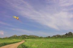Cerf-volant dans le ciel nuageux d'été Photos libres de droits