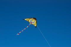 Cerf-volant de tigre Photographie stock