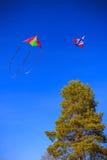Cerf-volant deux dans le ciel bleu Image stock