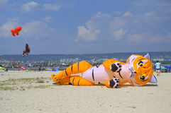 Cerf-volant drôle de chat se trouvant sur la plage Photos libres de droits