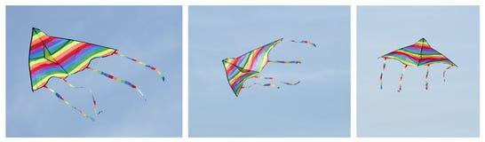 Cerf-volant multicolore images stock