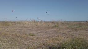 Cerf-volant surfant en Espagne clips vidéos