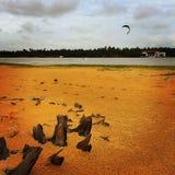 Cerf-volant surfant sur le Sri Lanka Photographie stock libre de droits