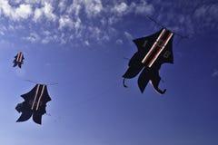 Cerf-volant traditionnel Images libres de droits