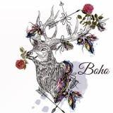 Cerfs communs avec des plumes et flèches tenant le St rose de tribal de boho de fleur Images libres de droits